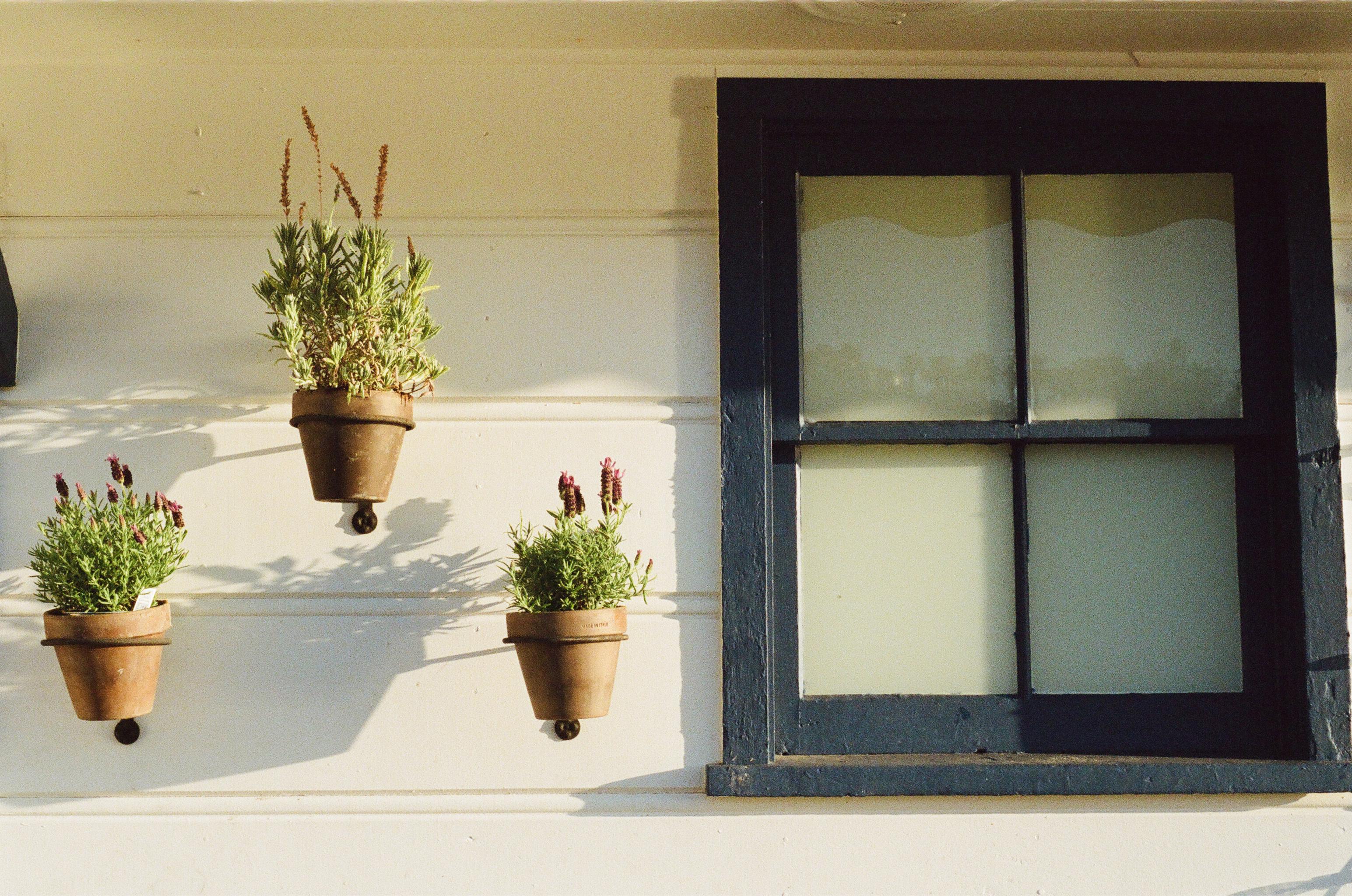 Janela de madeira preta em parede branca com 3 vasos de flores suspensos